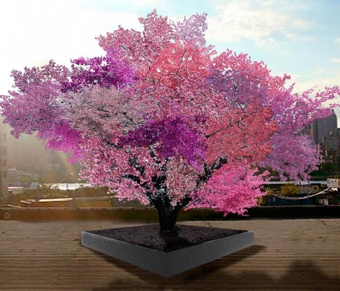 Tree of 40 fruit, un frutteto racchiuso in un'unica pianta