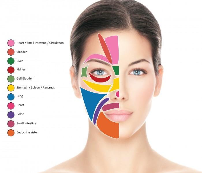 Direttamente dal Vietnam la riflessologia facciale per la cura di numerosi disturbi