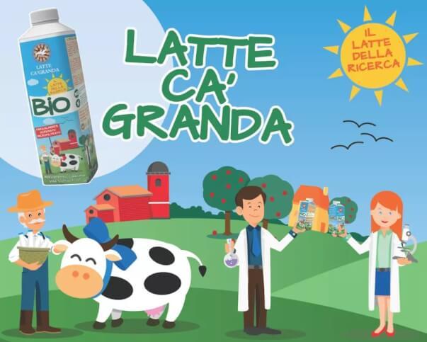 Ca' Granda: il latte della ricerca