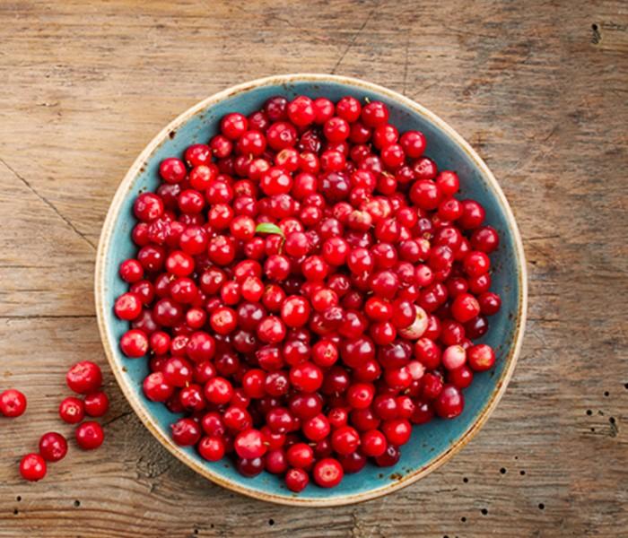 Le proprietà benefiche del mirtillo rosso